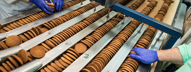 Workers prepare organic cookies for packaging.