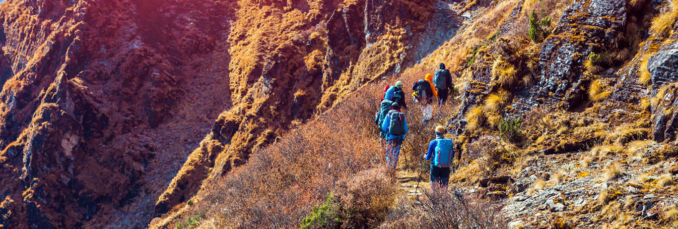 People hiking on a mountain trail. Find your way through the organic certification process.