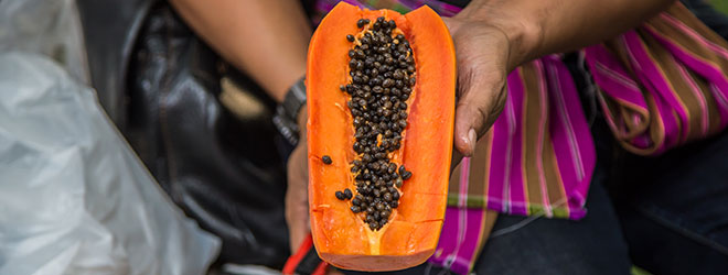 Person holding a papaya. QAI can assist you with organic certification in Mexico.