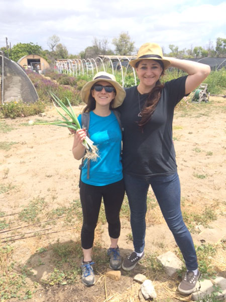 QAI organic certification team members having fun volunteering at an organic farm.